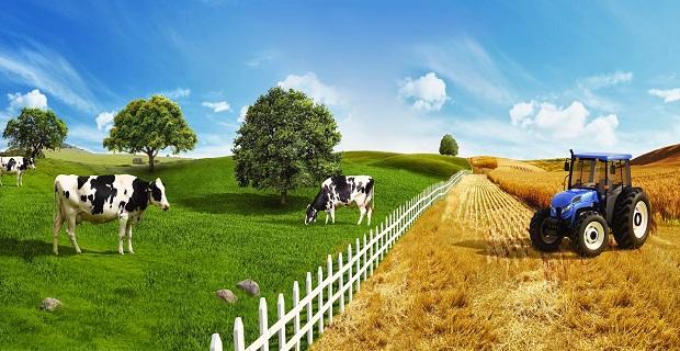 Çiftçiye Destek Kredisi Veren Bankalar ve Oranları
